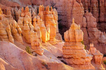 plateau point: Pillars at Bryce Canyon nation park, Utah, USA. Stock Photo