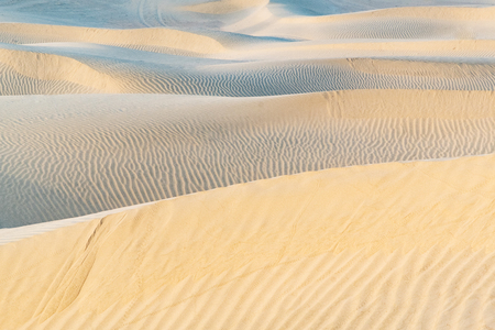 Beautiful sand dune in Thar desert, Jaisalmer, Rajasthan, India.
