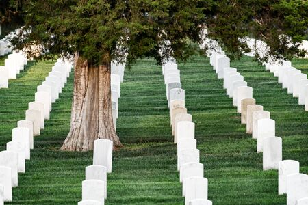 Grave stones in Arlington cemetery, Arlington, Virginia, USA. 写真素材