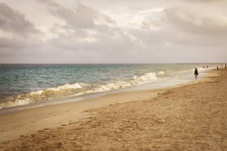 autum: Quiet autum scene. Walking on the beach