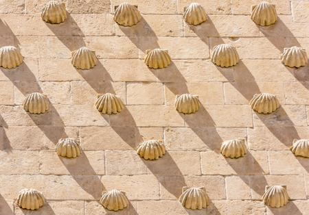 サラマンカ、スペイン等などで殻の詳細エクステリアのイメージは、公室から撮影。サラマンカの旧市街はユネスコの世界遺産を宣言されています