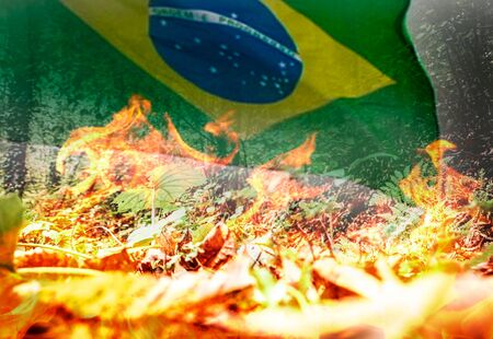 Raging and dangerous tropical forest fire and Brazilian flag - digital composite.