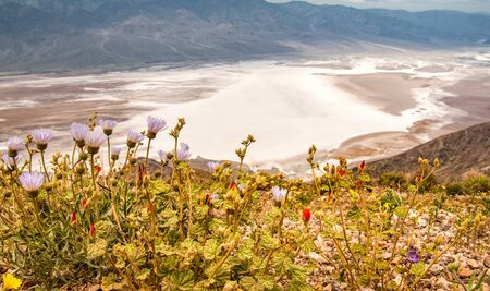 Salt Badwater Basin Panamint Mountains from Dantes View ,Death Valley National Park Stock fotó