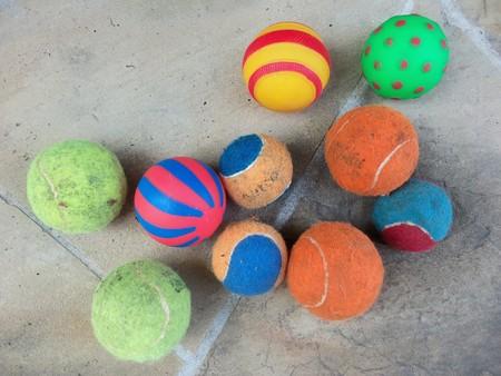 A bunch of dog balls
