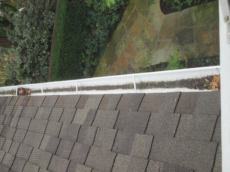A gutter filled with leaves and debris