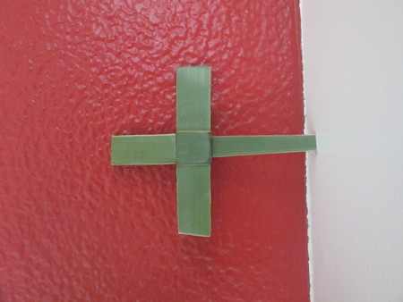A palm cross up against a red wall