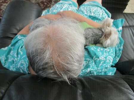 An old woman with gray hair holding a yorkshire terrier on her lap
