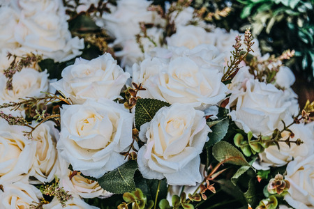 White Artificial rose flower in vintage tone Stok Fotoğraf