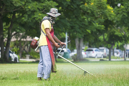 grass cutting: Cutting grass in garden with the trimmer Stock Photo