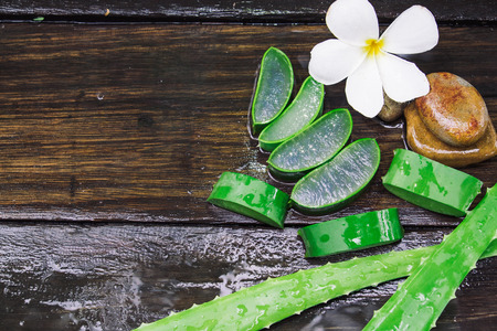 Close up of aloevera on wet wood background with copyspace