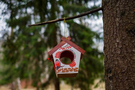 bird feeder Stok Fotoğraf