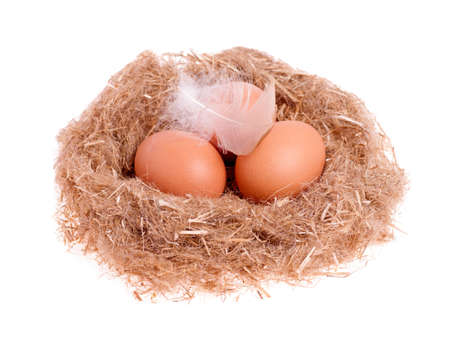 three yellow balls with a feather in the nest isolated Stock Photo - 17570869