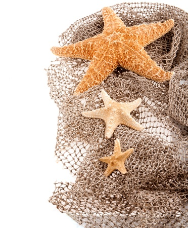 three sea the stars of different sizes lie on the fishing net on a white background photo