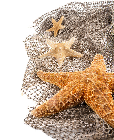 three sea the stars of different sizes lie on the fishing net on a white background Stock Photo
