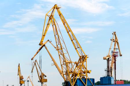 cargo cranes in the port of photo