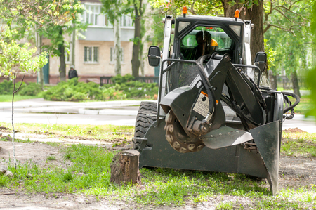 tree removal service: machine crushes the stump
