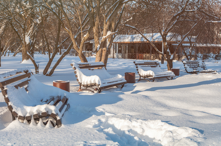 park benches in the winter in the snow Stock Photo
