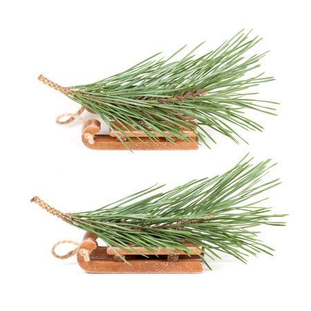 green branch lies on a sled, isolated, different angle Stock Photo