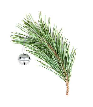 spruce green branch with silver bebunens toy, isolated