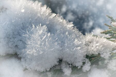 fluffy snow with crystals in nature, snowy winter background