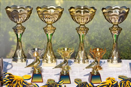 gold cups, awards to winners at the bird show