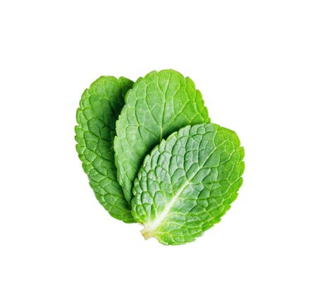 three young mint leaf isolated on a white background