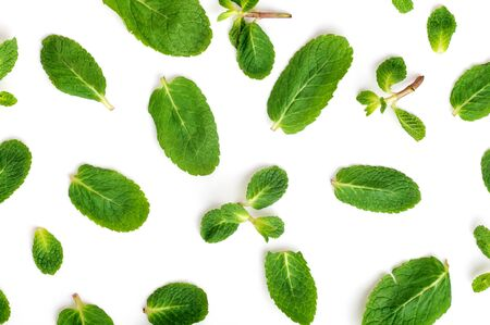 young fresh mint leaves scattered isolated on a white background