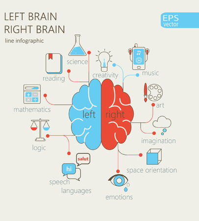 Brain left analytical and right creative hemispheres infographics liner style set vector illustration.