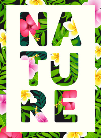 slogan: Tropical print slogan. For brochures and banners, vector illustration. Illustration