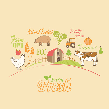 quot: Organic and farm vector concept. vector illustration. Illustration