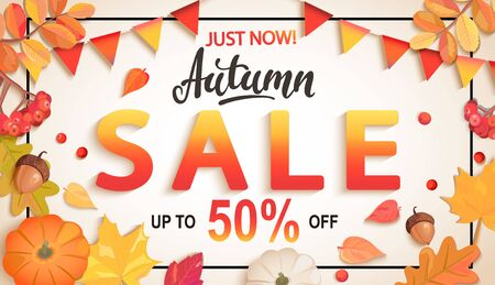 Banner for Autumn sale, 50 percent discount with seasonal fall leaves, rowan, pumpkin, acorn, flags for shopping promotions,prints,flyers,invitations, special offer poster.Top view.Vector illustration Stock Illustratie