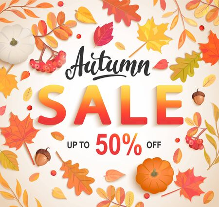 Autumn big sale banner, 50 percent discount card with scattered seasonal fall leaves,rowan, pumpkin,acorn for shopping promotions,prints,flyers,invitations, special offer poster.Top view.Vector