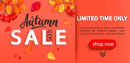 Autumn sale banner with place for text, limited time discounts. Fall leaves, rowan berries for seasonal shopping promotion, web, flyers. Template for cards, advertise. Vector illustration.