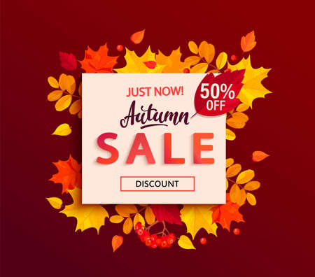 Autumn sale banner with square frame and colorful fall leaves, rowan berries, acorns for seasonal shopping promotion,web. Template for discount cards, flyers, posters, advertise. Vector illustration. Archivio Fotografico - 153401864