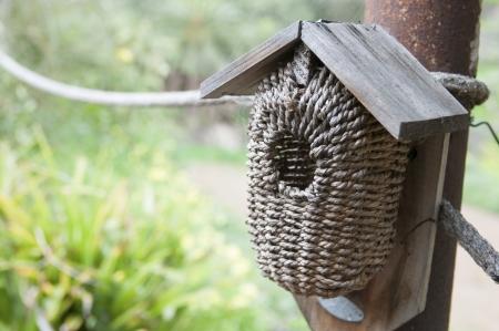 bird house: bird house in a green garden