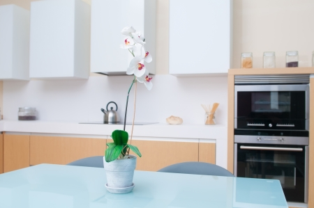 modern kitchen in a modern house photo