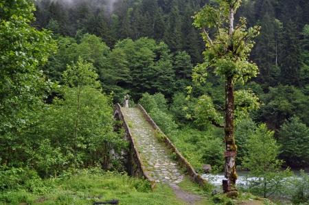 koprusu: A historical stone arch bridge at Rize Stock Photo