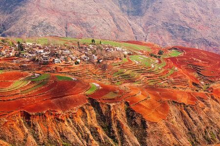 Fantastic landscape, colorful scenic old village of Red Land at sunrise, red mountain backgrounds. The sun shines down around terraced wheat fields. Dongchuan, China. Spring season. Bright sunlight.