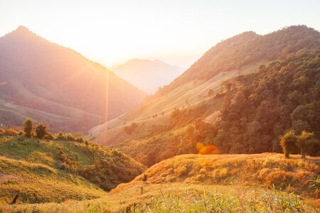 Beautiful time. Bright and colorful scenic landscape. Golden sunlight shines down around the mountains and paddy fields. Fantastic light in winter season. Scenery tropical forest. Doi Phu Kha National Park, Bo Kluea, Nan, Thailand. Warm tone. Beautiful lens flare.