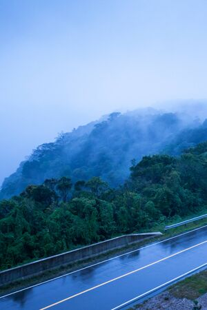 Mountain road in foggy dusk, asphalt road through the mountain top of Phnom Bokor Mountain in rainy day, Preah Monivong Bokor National Park, Kampot, top tourist attractions in Cambodia. Shallow dept of field. Blue tone.