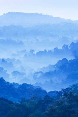 Scenery landscape of mountain range on winter morning, gently fog cover the tropical forest, beautiful shape of canopy of wild trees, soft sunrise. Nam Nao National Park, Thailand. Stock fotó