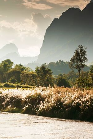 Scenery landscape of Nam Song River at dusk, golden sunlight shines through a mountain range on the valley and wild reed flowers on riverbank, bright glittering on surface of water, winter scene in North Laos.
