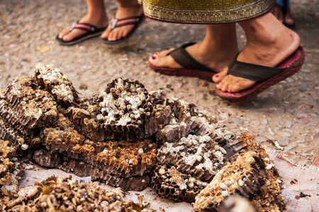 Closeup of pieces of wasp's nest laying on the ground at the daily market of Luang Prabang, Laos, two laotian women walking past the daily market. Фото со стока