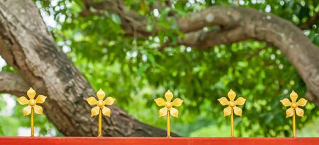 Orange steel fence decorated with wrought iron golden flowers isolated on blurred branches of mango tree backgrounds. 版權商用圖片