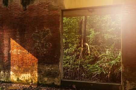 An abandoned interior of ancient fort, view from inside looking out, sunbeam shines through young green forest and ruined window into an old brick wall. Selective focus.
