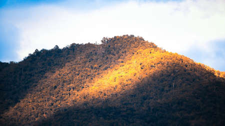 Scenery mountains forest at sunrise, sunbeam shines onto colourful forest on winter morning. Holidays, Vacations concepts.