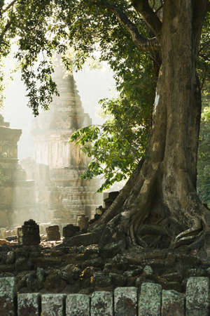 Ancient temple and pagoda at sunrise, large trees growing on ancient stone wall. Sukhothai Historical Park, Thailand. Focus on pagoda in the mist.