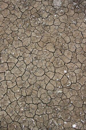 splitting up: Cracked soil background