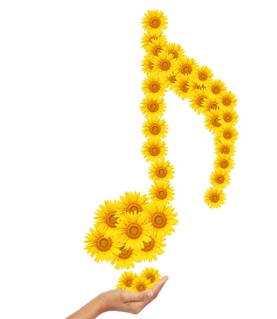 Hand idea with sunflower music notes image isolate on white photo