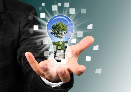 financial consultants: businessman hand holding a blub with tree inside  Stock Photo